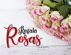 regala rosas en Medellín