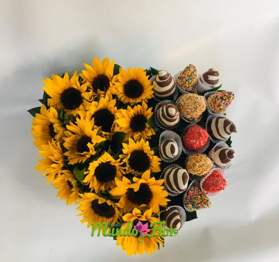 Girasoles_fresas_con_chocolate
